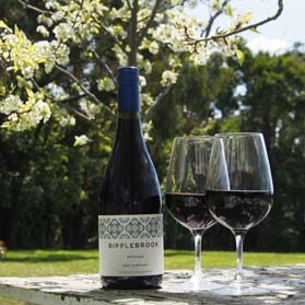 Wine and blossoms
